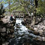 Wodospad w Parku Oliwskim