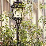 Lampa na ulicy Mariackiej