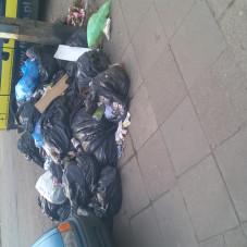 Długie Ogrody zarastają śmieciami 2