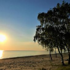 Sunrise in Bird Paradise.