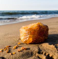Bałtyckie złoto - skarby Wyspy Sobieszewskiej