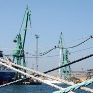 Port Gdynia 2