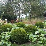 Ogród wtopiony w naturę