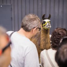 Międzynarodowe Targi Zoologiczne Animal Baltic