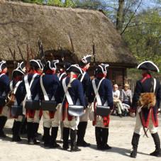 mundury wojsk napoleonskich i musztra