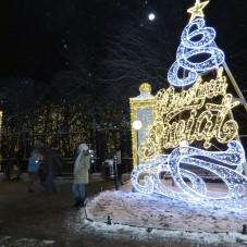 Park Oliwski Zimą