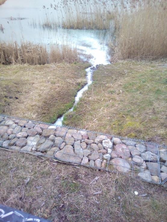 Niepokojący kolor potoku na Łostowicach