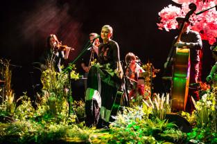 Koncertowy marzec w Trójmieście - wiosna w pełni