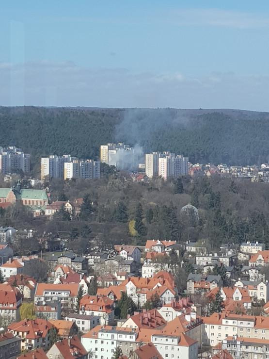 Pożar śmieci w Oliwie