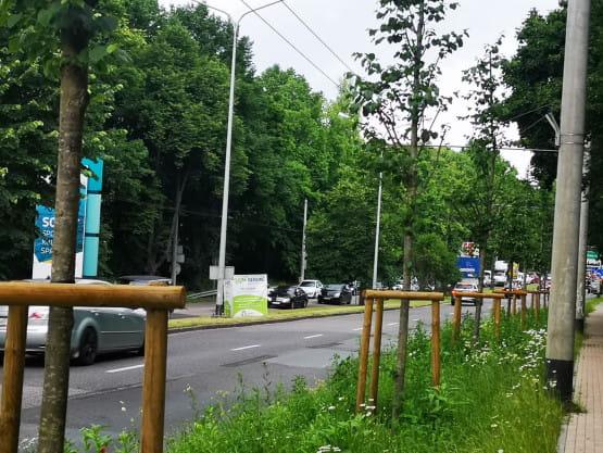 Korek na granicy Sopot-Gdynia w stronę Sopotu