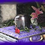 kremacja kalia