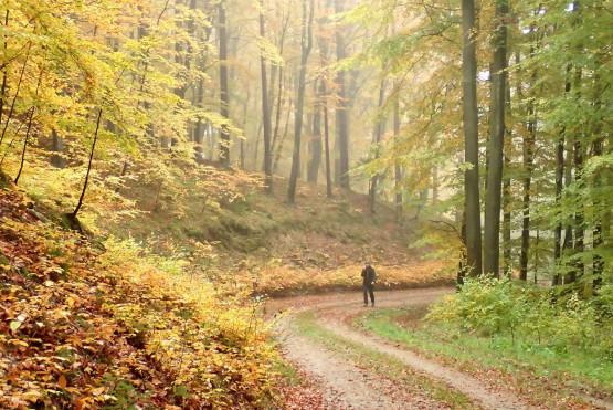 Przemierzaj z nami piękny nasz region, Polskę, Świat. Dołącz na do naszych wędrówek, wycieczek rowerowych, spływów kajakowych. Poznawaj ciekawych ludzi, baw się i wypoczywaj !