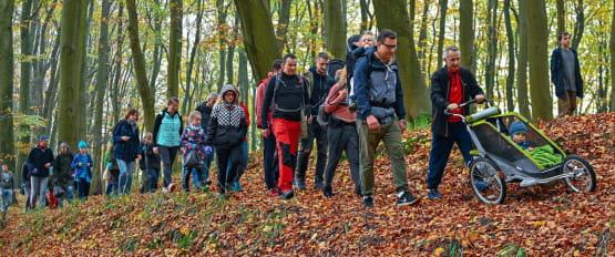 Poznaj z nami ciekawostki krajoznawcze Trójmiejskiego Parku Krajobrazowego. Zabierz dzieci, rodziców, dziadków, sąsiadów, przyjaciół i spędzaj aktywnie czas