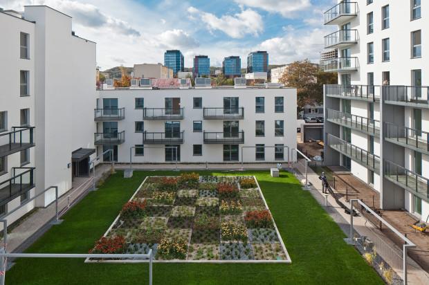Wewnątrz kwartału zabudowy znalazł się zagospodarowany zielenią dziedziniec.