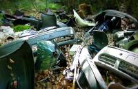 Wysypisko śmieci w środku lasu