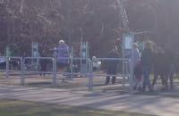 Bulwar Gdynia - dziadkowie czują wiosnę