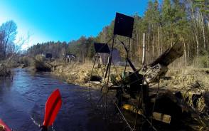 Skotawa, rzeka powalonych drzew