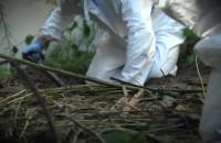 Policjanci odnaleźli szczątki zaginionej kobiety