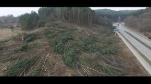 Wycinka drzew przy ul. Słowackiego w Gdańsku - ujęcia z powietrza