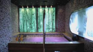 Luksusowe wnętrza Stena Vision