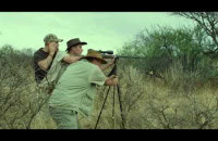 Safari - zwiastun