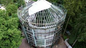 Rozbiórka palmiarni w Parku Oliwskim