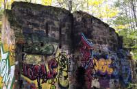 Ruiny w sopockim lesie
