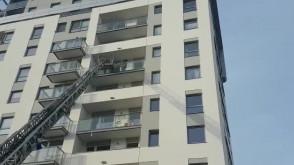 Strażacy ratują ptaka na balkonie