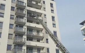 Strażacy uratowali ptaka z balkonu