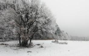 Zima, nie zima, na rowerze kręcić trzeba
