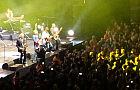 Fragmenty koncertu Dire Straits Experience