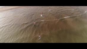 Gdańskie morsy z lotu ptaka :)