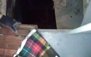 Lament kociaka w szambie na widok ludzi idących mu z pomocą