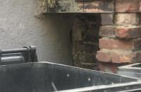 Szczury w śmietniku przy ul. Ogarnej w Gdańsku