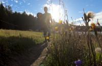 Szlaki nordic walking w południowej części Trójmiejskiego PK
