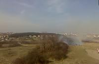 Paląca się trawa.przy ul. Kampinoskiej w Gdańsku