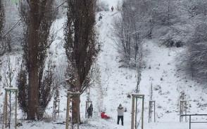 Dzieci jeżdżą na sankach w Jarze Wilanowskim
