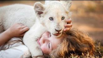 Mia i biały lew - zwiastun