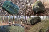 Najciekawsze głazy Lasach Oliwskich