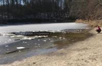 Kąpiel z psem w jeziorze Otomińskim