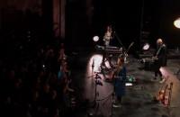 Niemiłość 2 - Mikromusic