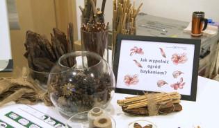 Erotyczne życie roślin w gdyńskim Experymencie