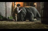 Zoo - zwiastun