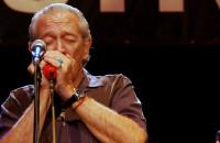 Najszczerszy blues Charliego Musselwhitea