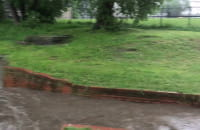 Podniesiony poziom wody w Parku nad Strzyżą