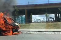 Pożar busa przy porcie w Gdyni