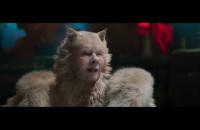 Koty - zwiastun