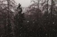 W Osowej gęste opady śniegu