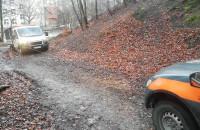 Radiowóz straży miejskiej wciąga auto do lasu po kota