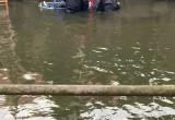 Ciało znalezione w kanale Raduni w centrum Gdańska